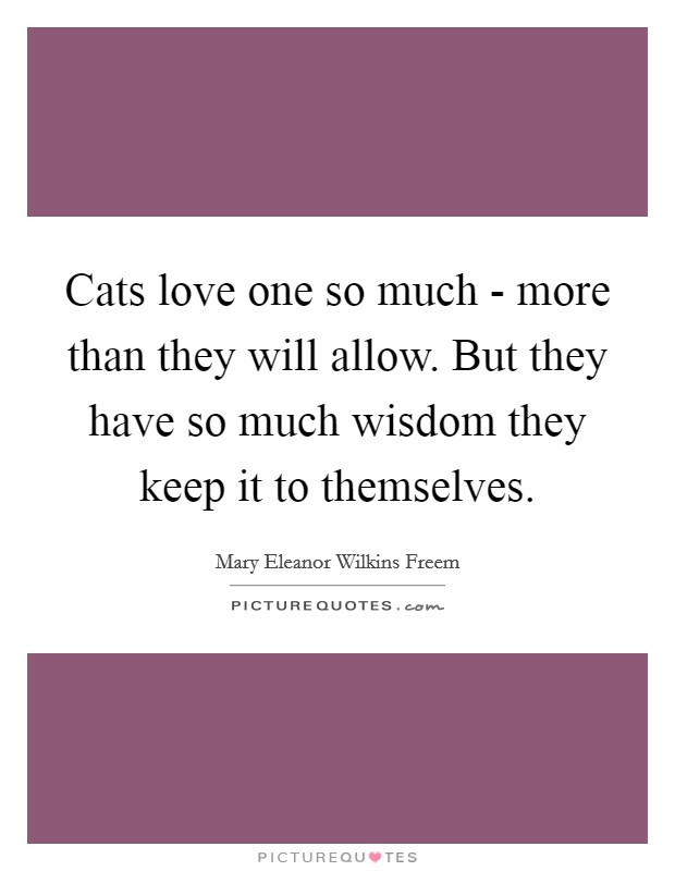 Cats love one so much - more than they will allow. But they have so much wisdom they keep it to themselves Picture Quote #1