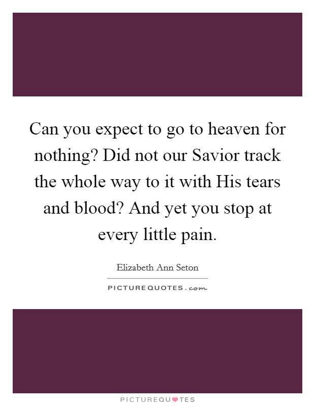 Can you expect to go to heaven for nothing? Did not our Savior track the whole way to it with His tears and blood? And yet you stop at every little pain Picture Quote #1