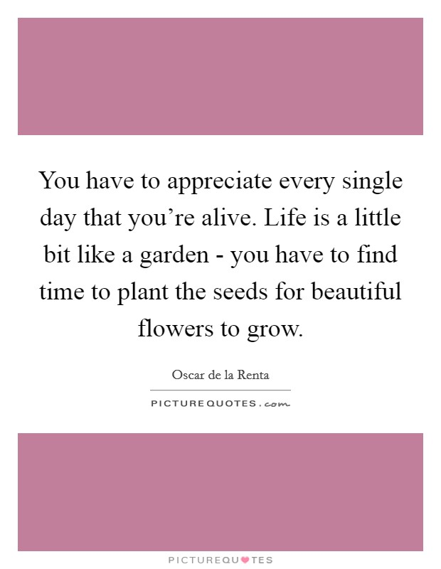You have to appreciate every single day that you're alive. Life is a little bit like a garden - you have to find time to plant the seeds for beautiful flowers to grow Picture Quote #1