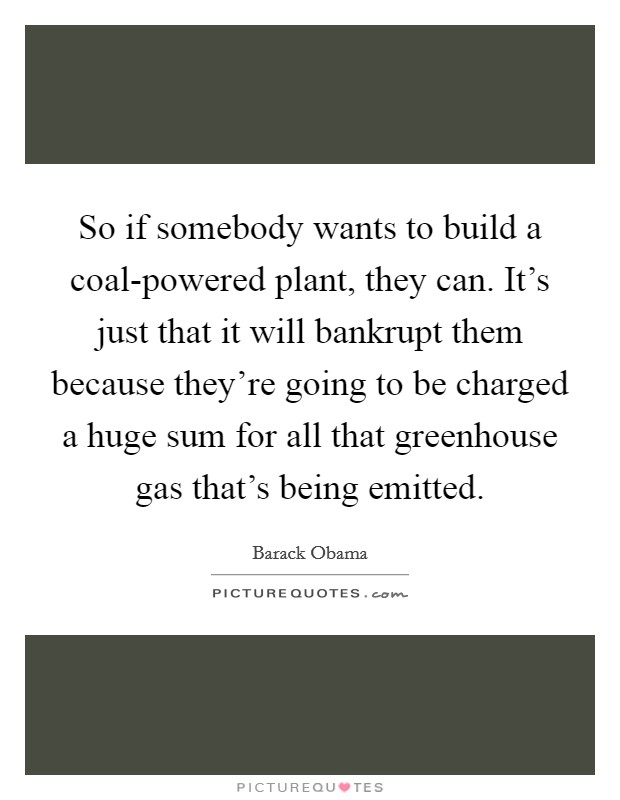 So if somebody wants to build a coal-powered plant, they can. It's just that it will bankrupt them because they're going to be charged a huge sum for all that greenhouse gas that's being emitted Picture Quote #1