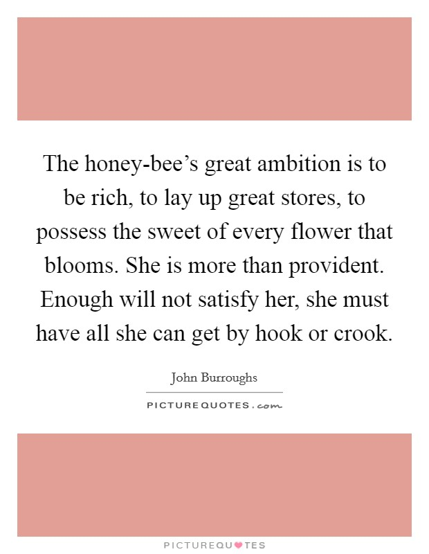 The honey-bee's great ambition is to be rich, to lay up great stores, to possess the sweet of every flower that blooms. She is more than provident. Enough will not satisfy her, she must have all she can get by hook or crook Picture Quote #1