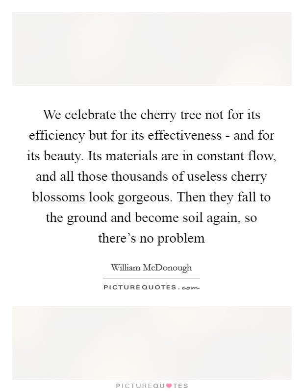 We celebrate the cherry tree not for its efficiency but for its effectiveness - and for its beauty. Its materials are in constant flow, and all those thousands of useless cherry blossoms look gorgeous. Then they fall to the ground and become soil again, so there's no problem Picture Quote #1