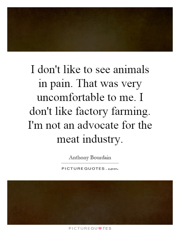 I don't like to see animals in pain. That was very uncomfortable to me. I don't like factory farming. I'm not an advocate for the meat industry Picture Quote #1