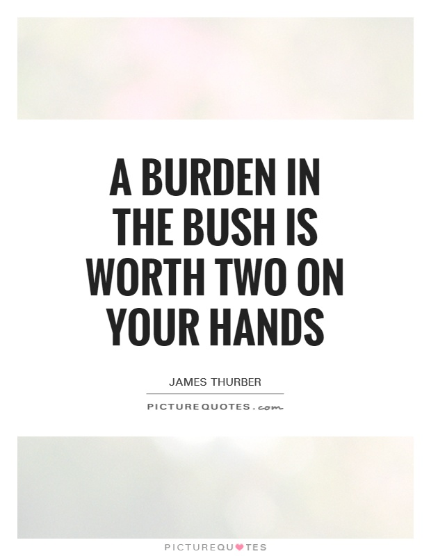 A burden in the bush is worth two on your hands Picture Quote #1
