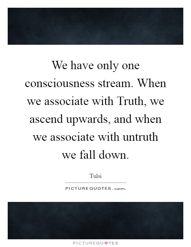We have only one consciousness stream. When we associate with Truth, we ascend upwards, and when we associate with untruth we fall down Picture Quote #1