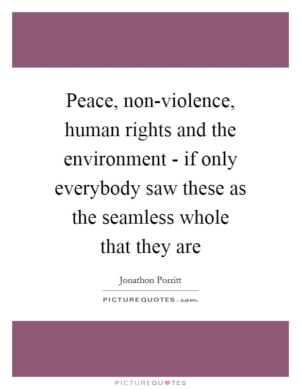 Peace, non-violence, human rights and the environment - if only everybody saw these as the seamless whole that they are Picture Quote #1