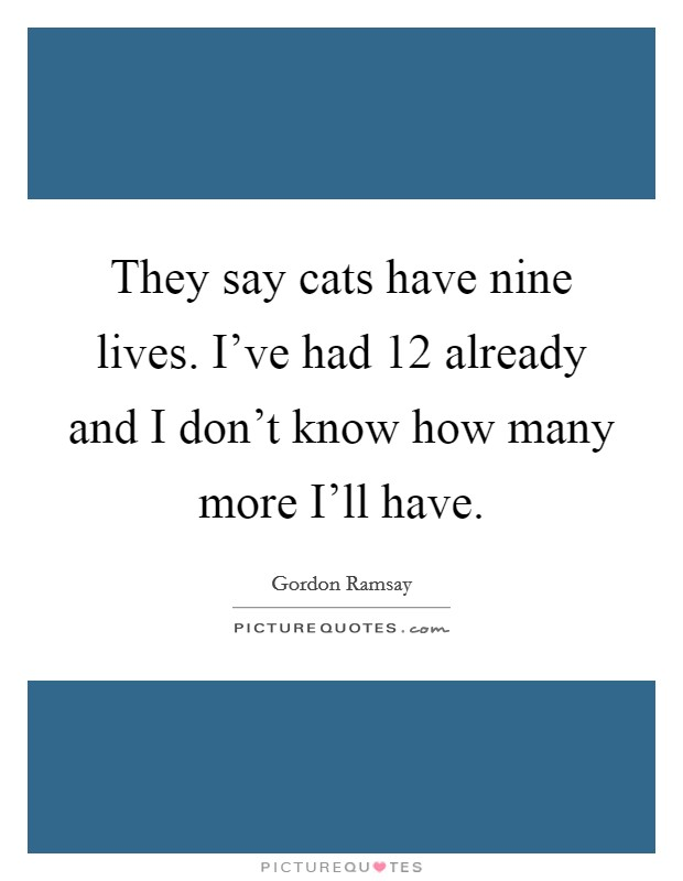 They say cats have nine lives. I've had 12 already and I don't know how many more I'll have Picture Quote #1