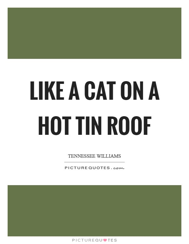 Like a Cat on a hot tin roof Picture Quote #1