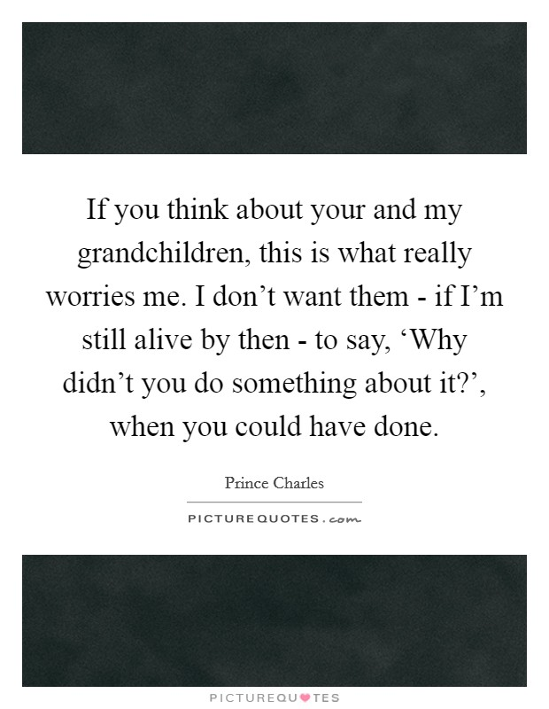 If you think about your and my grandchildren, this is what really worries me. I don't want them - if I'm still alive by then - to say, 'Why didn't you do something about it?', when you could have done Picture Quote #1