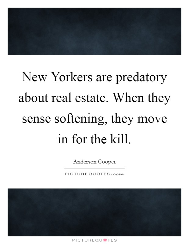 New Yorkers are predatory about real estate. When they sense softening, they move in for the kill Picture Quote #1