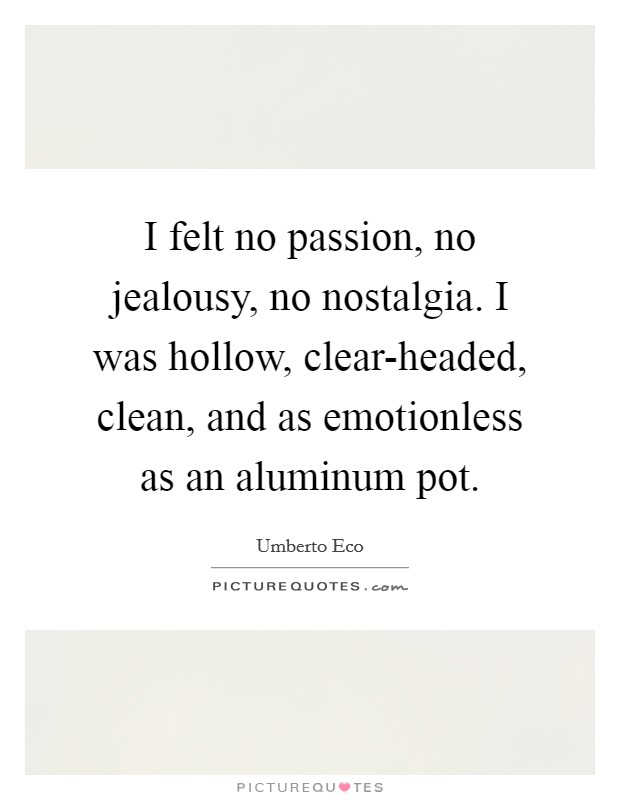 I felt no passion, no jealousy, no nostalgia. I was hollow, clear-headed, clean, and as emotionless as an aluminum pot Picture Quote #1