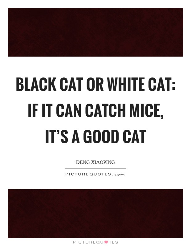 Black cat or white cat: If it can catch mice, it's a good cat Picture Quote #1