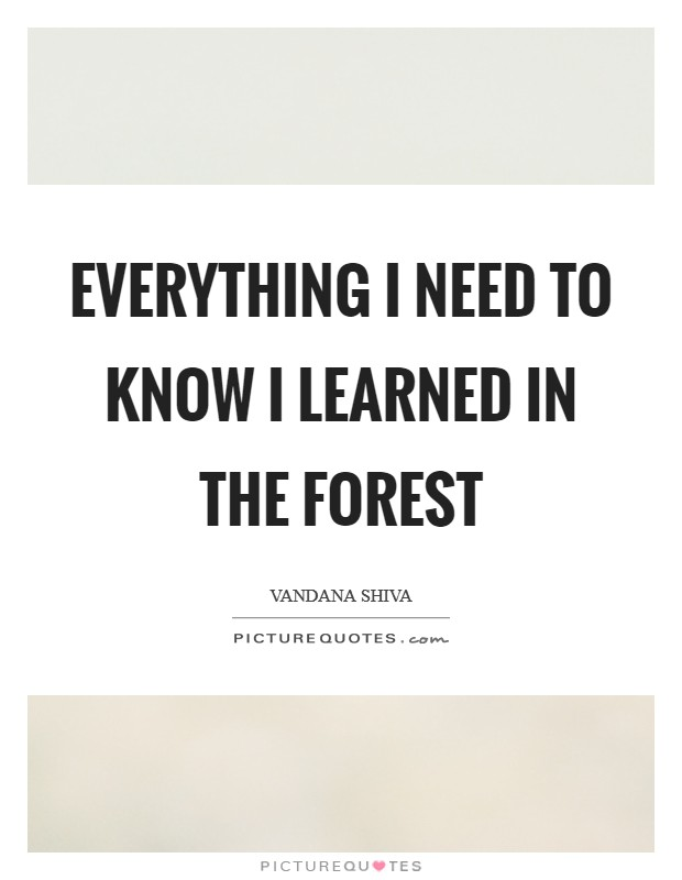 Everything I need to know I learned in the forest Picture Quote #1
