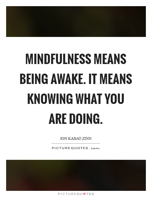 Mindfulness means being awake. It means knowing what you are doing Picture Quote #1