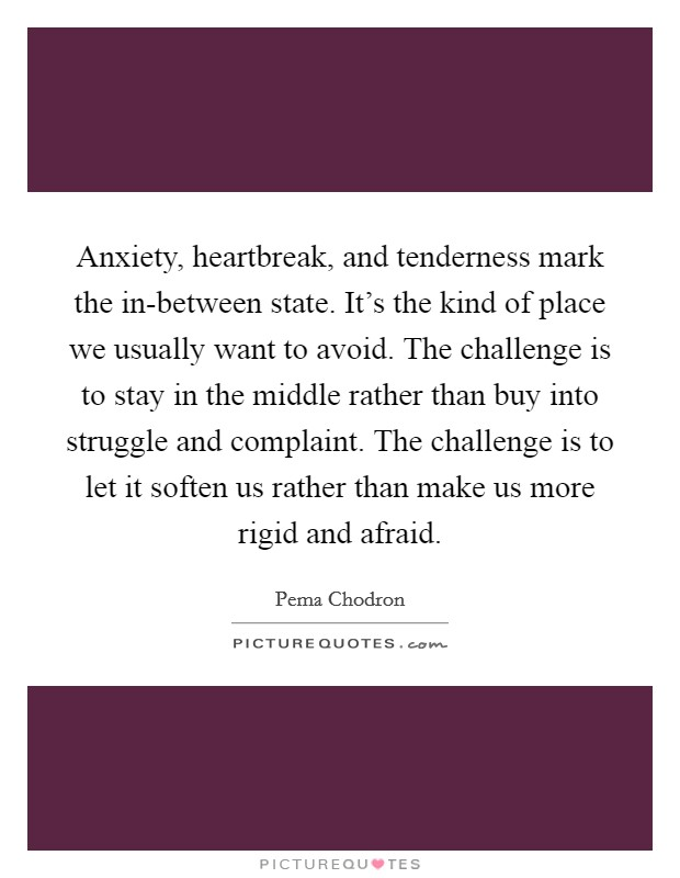 Anxiety, heartbreak, and tenderness mark the in-between state. It's the kind of place we usually want to avoid. The challenge is to stay in the middle rather than buy into struggle and complaint. The challenge is to let it soften us rather than make us more rigid and afraid Picture Quote #1