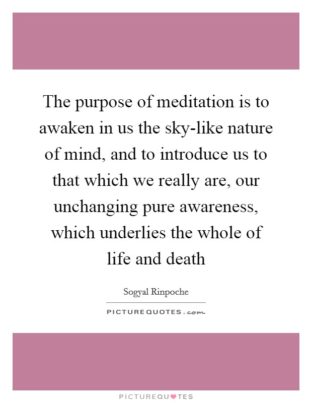 The purpose of meditation is to awaken in us the sky-like nature of mind, and to introduce us to that which we really are, our unchanging pure awareness, which underlies the whole of life and death Picture Quote #1