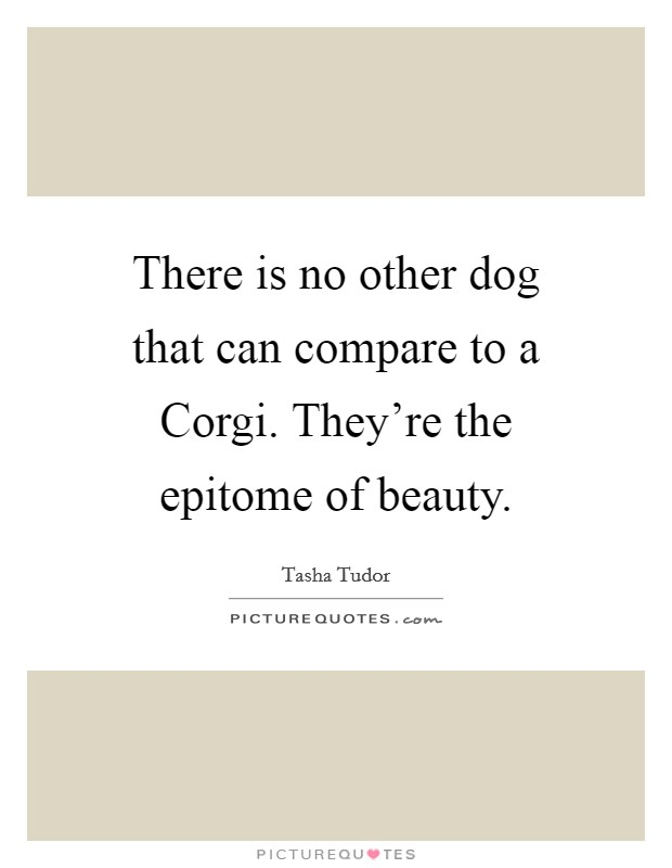 There is no other dog that can compare to a Corgi. They're the epitome of beauty Picture Quote #1