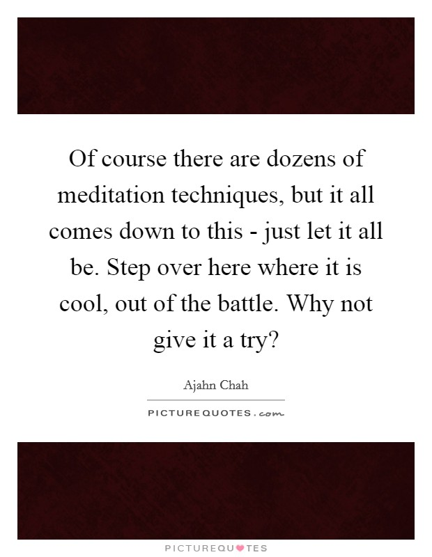 Of course there are dozens of meditation techniques, but it all comes down to this - just let it all be. Step over here where it is cool, out of the battle. Why not give it a try? Picture Quote #1