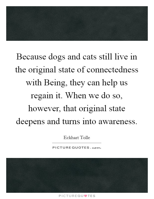 Because dogs and cats still live in the original state of connectedness with Being, they can help us regain it. When we do so, however, that original state deepens and turns into awareness Picture Quote #1