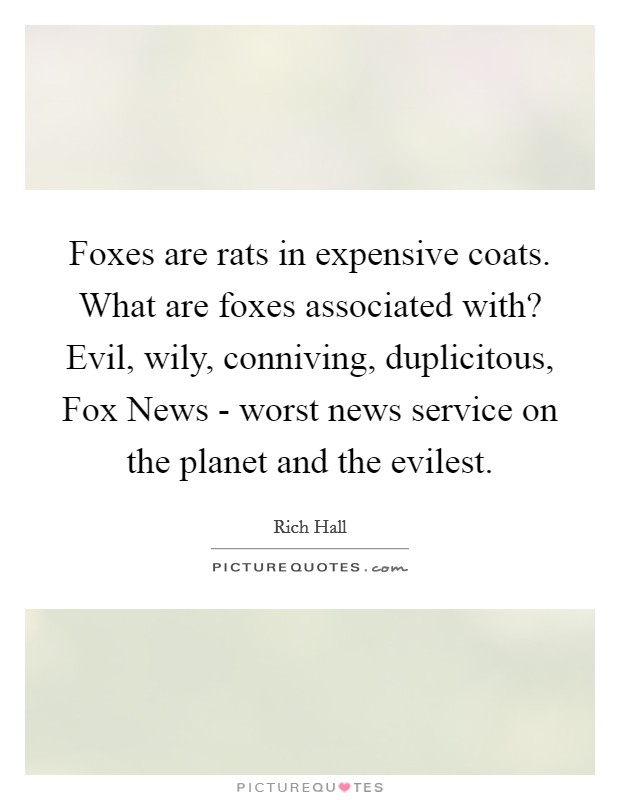 Foxes are rats in expensive coats. What are foxes associated with? Evil, wily, conniving, duplicitous, Fox News - worst news service on the planet and the evilest Picture Quote #1