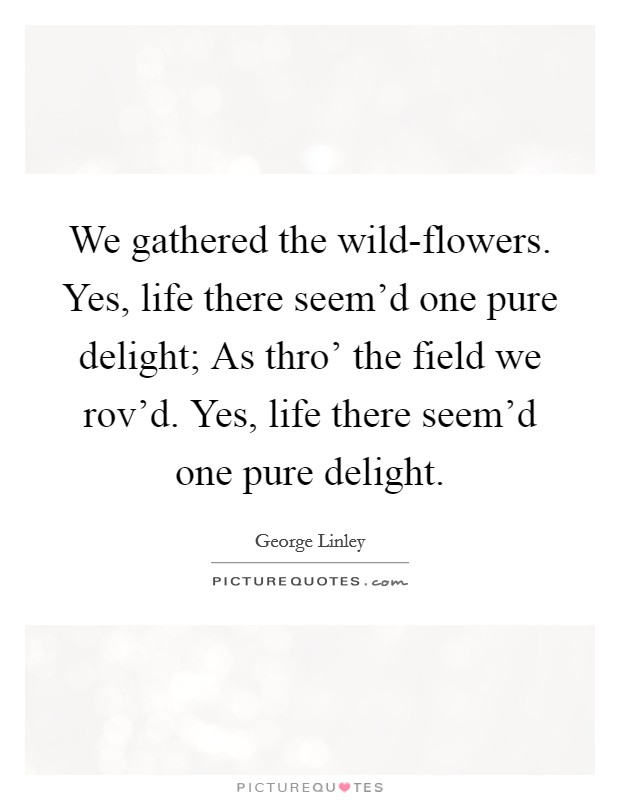 We gathered the wild-flowers. Yes, life there seem'd one pure delight; As thro' the field we rov'd. Yes, life there seem'd one pure delight Picture Quote #1