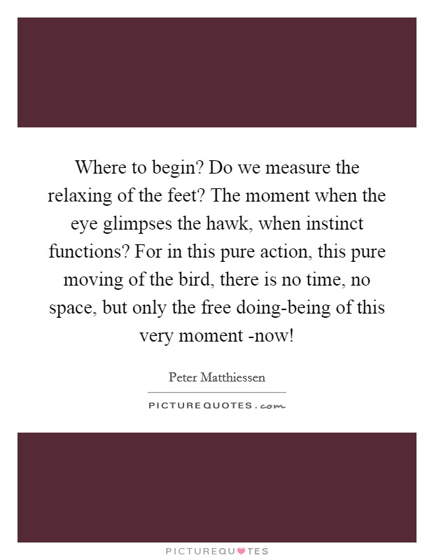 Where to begin? Do we measure the relaxing of the feet? The moment when the eye glimpses the hawk, when instinct functions? For in this pure action, this pure moving of the bird, there is no time, no space, but only the free doing-being of this very moment -now! Picture Quote #1