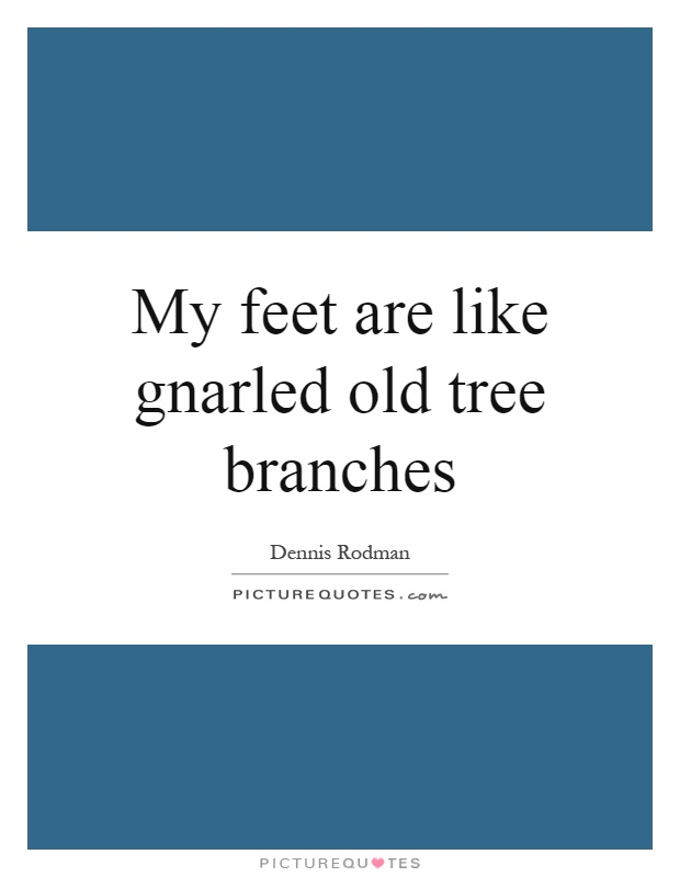 My feet are like gnarled old tree branches Picture Quote #1