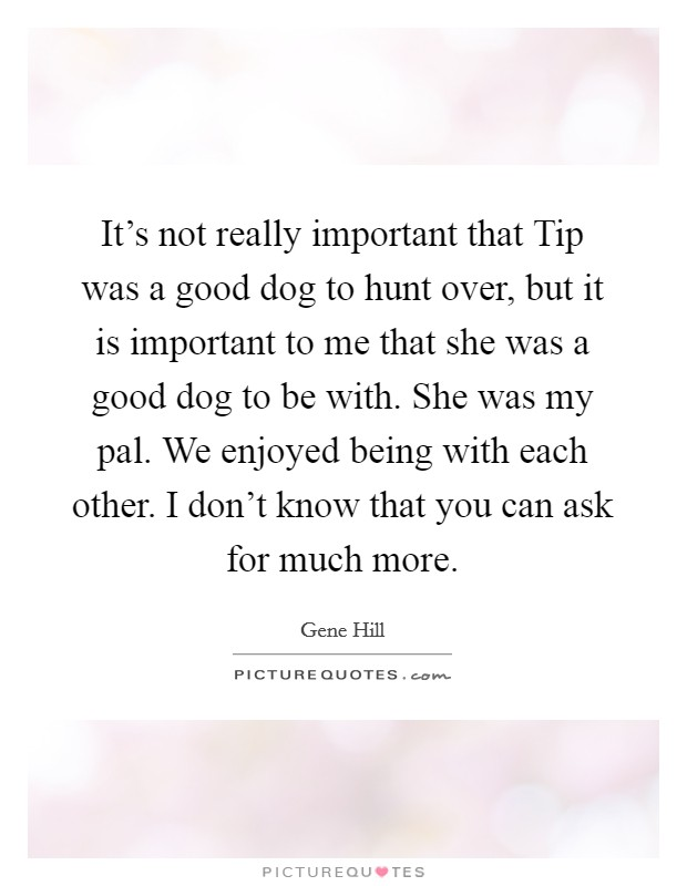 It's not really important that Tip was a good dog to hunt over, but it is important to me that she was a good dog to be with. She was my pal. We enjoyed being with each other. I don't know that you can ask for much more Picture Quote #1