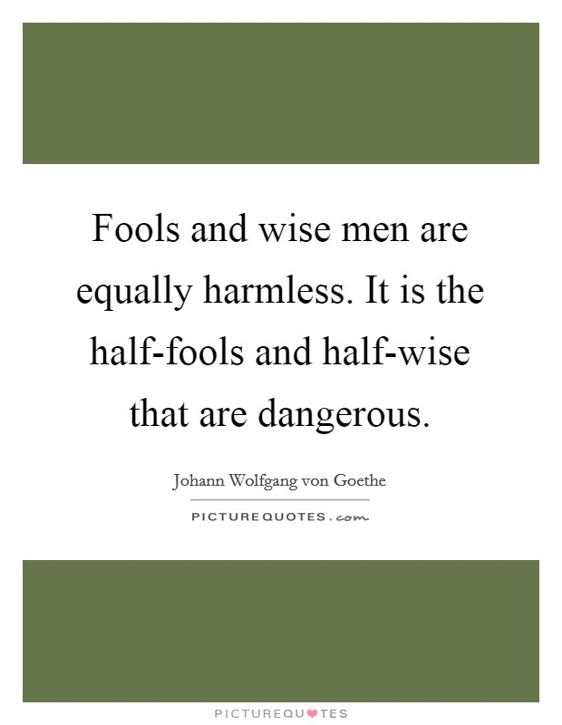 Fools and wise men are equally harmless. It is the half-fools and half-wise that are dangerous Picture Quote #1