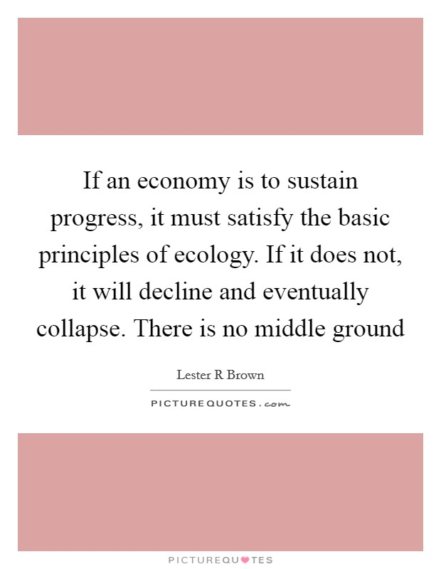 If an economy is to sustain progress, it must satisfy the basic principles of ecology. If it does not, it will decline and eventually collapse. There is no middle ground Picture Quote #1