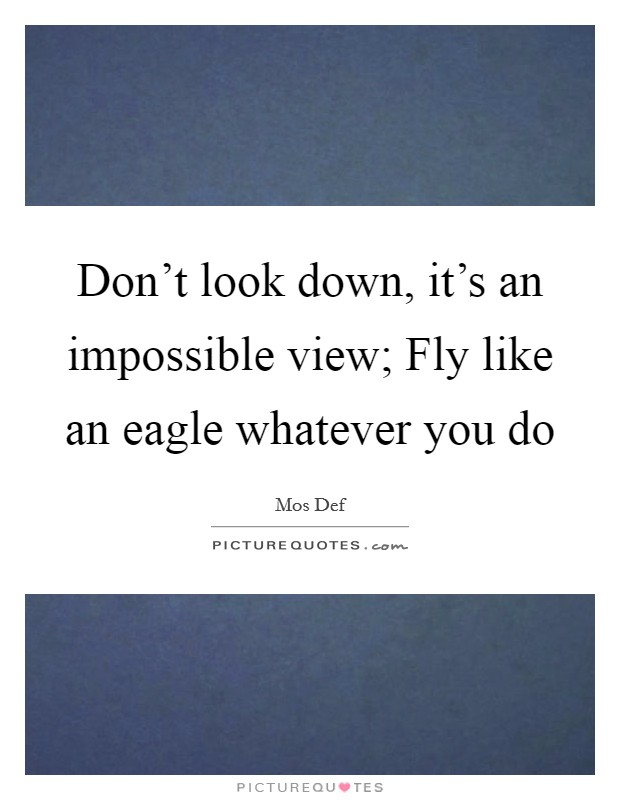 Don't look down, it's an impossible view; Fly like an eagle whatever you do Picture Quote #1