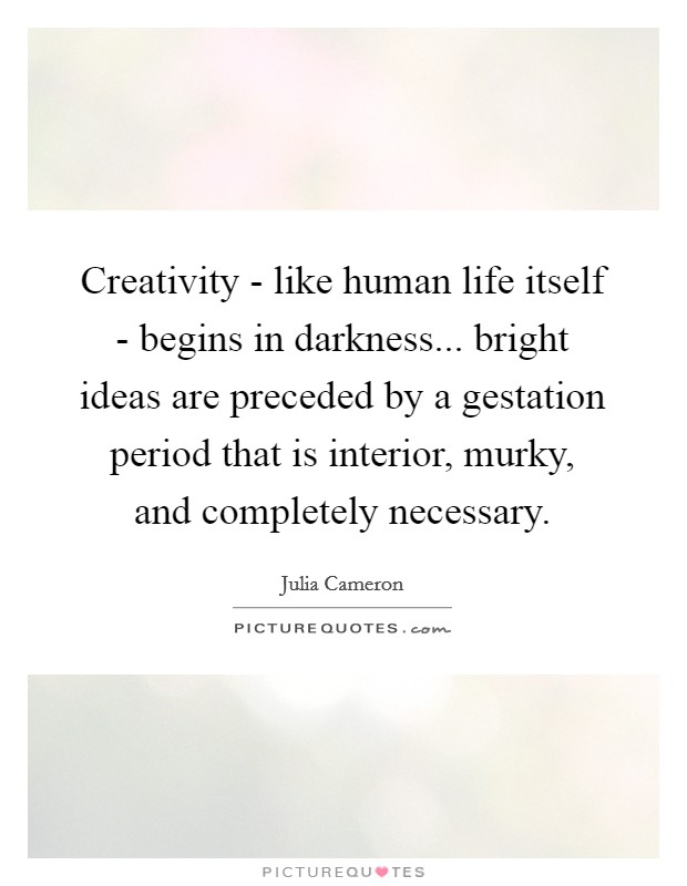 Creativity - like human life itself - begins in darkness... bright ideas are preceded by a gestation period that is interior, murky, and completely necessary Picture Quote #1