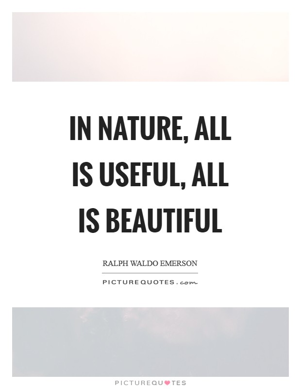 In Nature, all is useful, all is beautiful Picture Quote #1