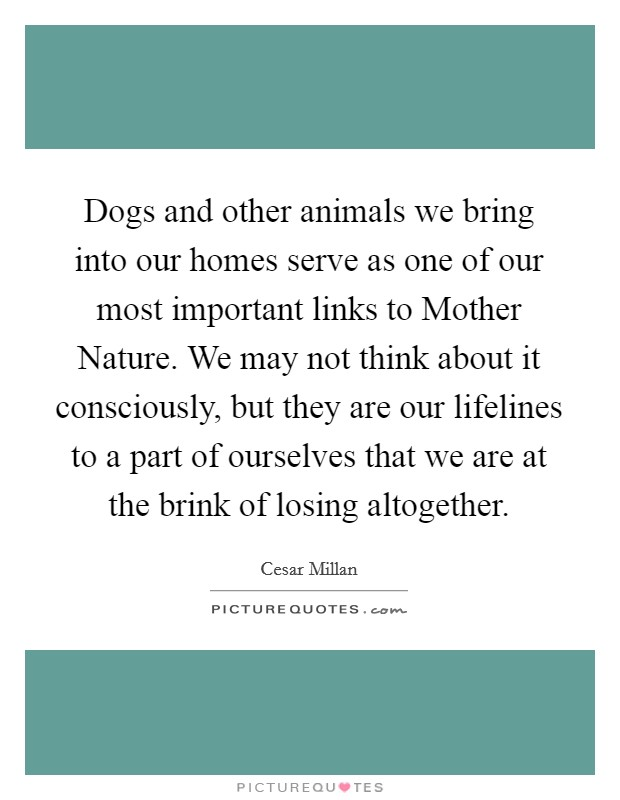 Dogs and other animals we bring into our homes serve as one of our most important links to Mother Nature. We may not think about it consciously, but they are our lifelines to a part of ourselves that we are at the brink of losing altogether Picture Quote #1