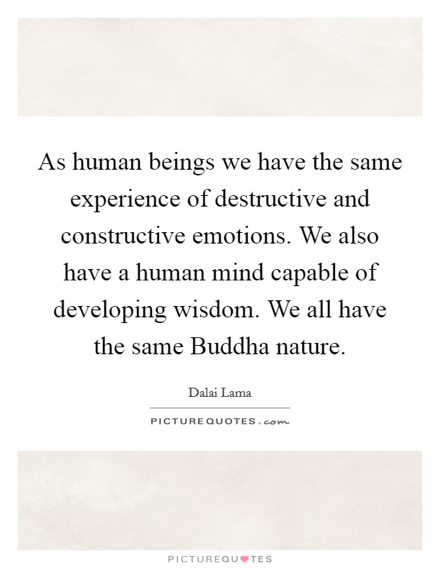 As human beings we have the same experience of destructive and constructive emotions. We also have a human mind capable of developing wisdom. We all have the same Buddha nature Picture Quote #1