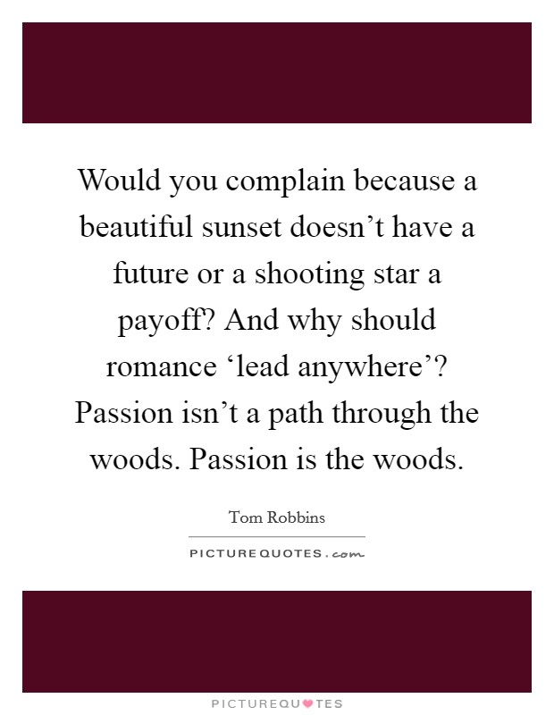 Would you complain because a beautiful sunset doesn't have a future or a shooting star a payoff? And why should romance 'lead anywhere'? Passion isn't a path through the woods. Passion is the woods Picture Quote #1
