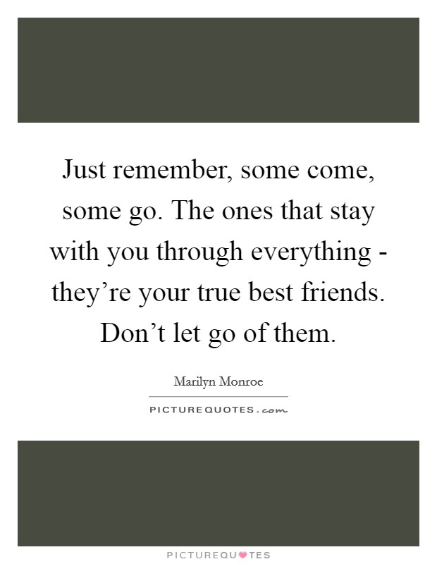 Just remember, some come, some go. The ones that stay with you through everything - they're your true best friends. Don't let go of them Picture Quote #1