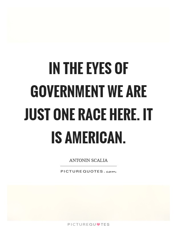 In the eyes of government we are just one race here. It is American Picture Quote #1