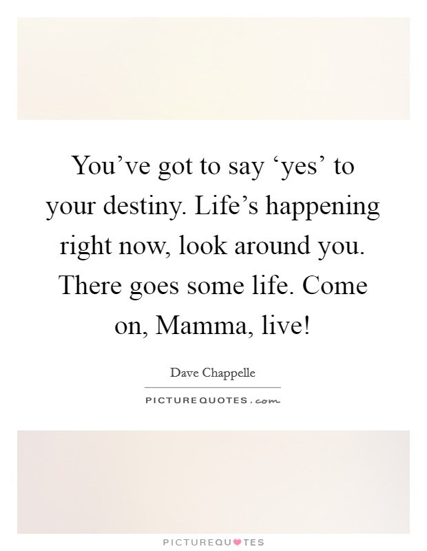 You've got to say 'yes' to your destiny. Life's happening right now, look around you. There goes some life. Come on, Mamma, live! Picture Quote #1