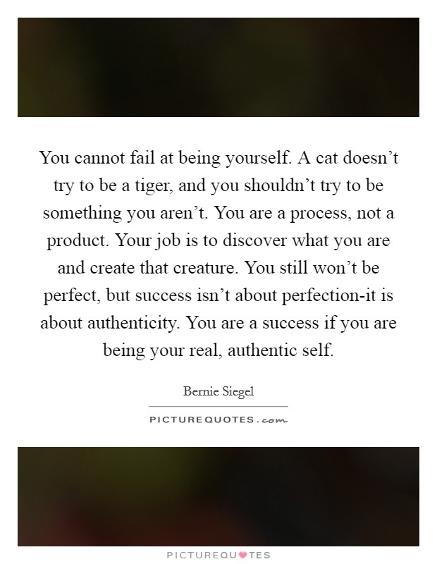 You cannot fail at being yourself. A cat doesn't try to be a tiger, and you shouldn't try to be something you aren't. You are a process, not a product. Your job is to discover what you are and create that creature. You still won't be perfect, but success isn't about perfection-it is about authenticity. You are a success if you are being your real, authentic self Picture Quote #1