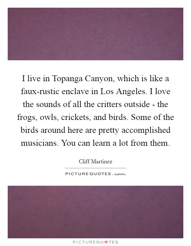 I live in Topanga Canyon, which is like a faux-rustic enclave in Los Angeles. I love the sounds of all the critters outside - the frogs, owls, crickets, and birds. Some of the birds around here are pretty accomplished musicians. You can learn a lot from them Picture Quote #1