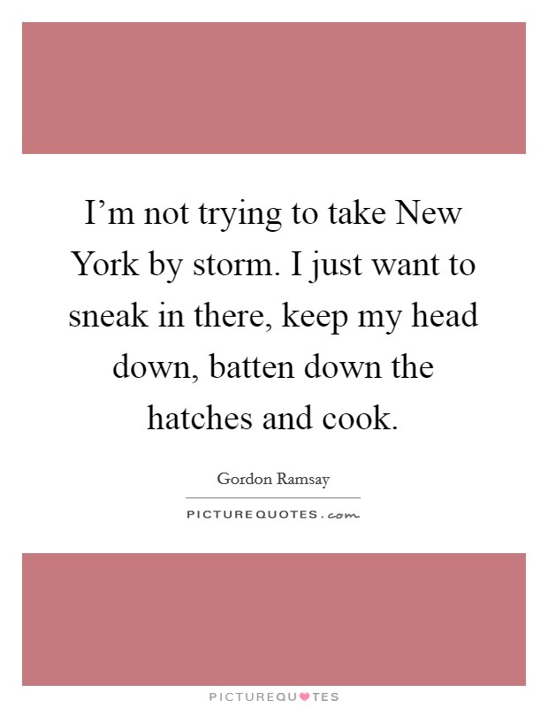 I'm not trying to take New York by storm. I just want to sneak in there, keep my head down, batten down the hatches and cook Picture Quote #1