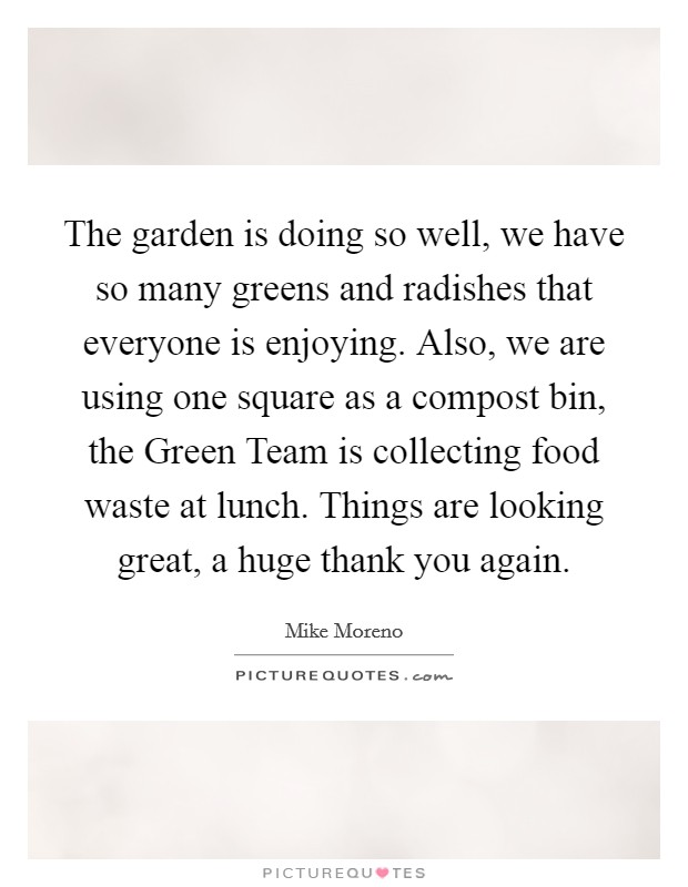 The garden is doing so well, we have so many greens and radishes that everyone is enjoying. Also, we are using one square as a compost bin, the Green Team is collecting food waste at lunch. Things are looking great, a huge thank you again Picture Quote #1