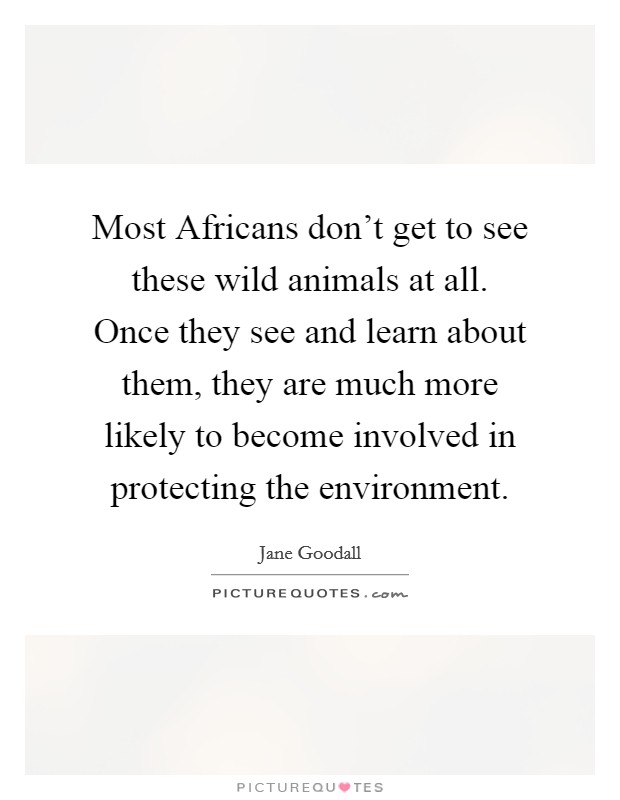 Most Africans don't get to see these wild animals at all. Once they see and learn about them, they are much more likely to become involved in protecting the environment Picture Quote #1