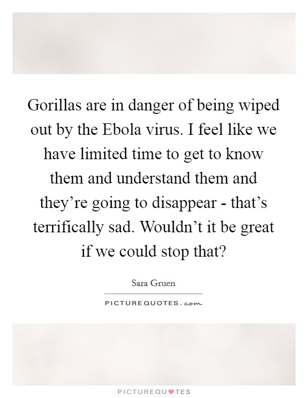 Gorillas are in danger of being wiped out by the Ebola virus. I feel like we have limited time to get to know them and understand them and they're going to disappear - that's terrifically sad. Wouldn't it be great if we could stop that? Picture Quote #1