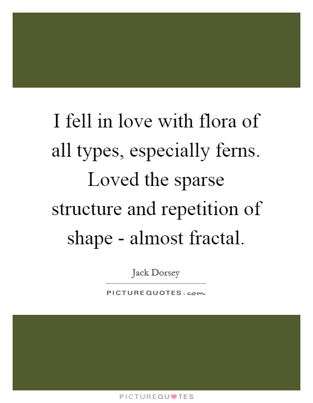 I fell in love with flora of all types, especially ferns. Loved the sparse structure and repetition of shape - almost fractal Picture Quote #1