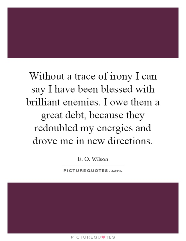 Without a trace of irony I can say I have been blessed with brilliant enemies. I owe them a great debt, because they redoubled my energies and drove me in new directions Picture Quote #1