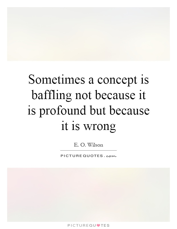 Sometimes a concept is baffling not because it is profound but because it is wrong Picture Quote #1