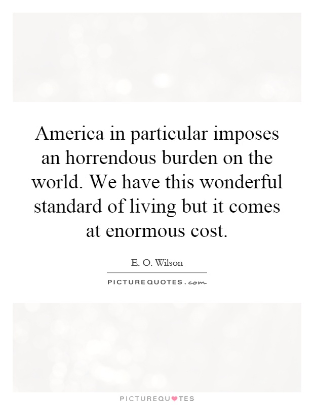 America in particular imposes an horrendous burden on the world. We have this wonderful standard of living but it comes at enormous cost Picture Quote #1