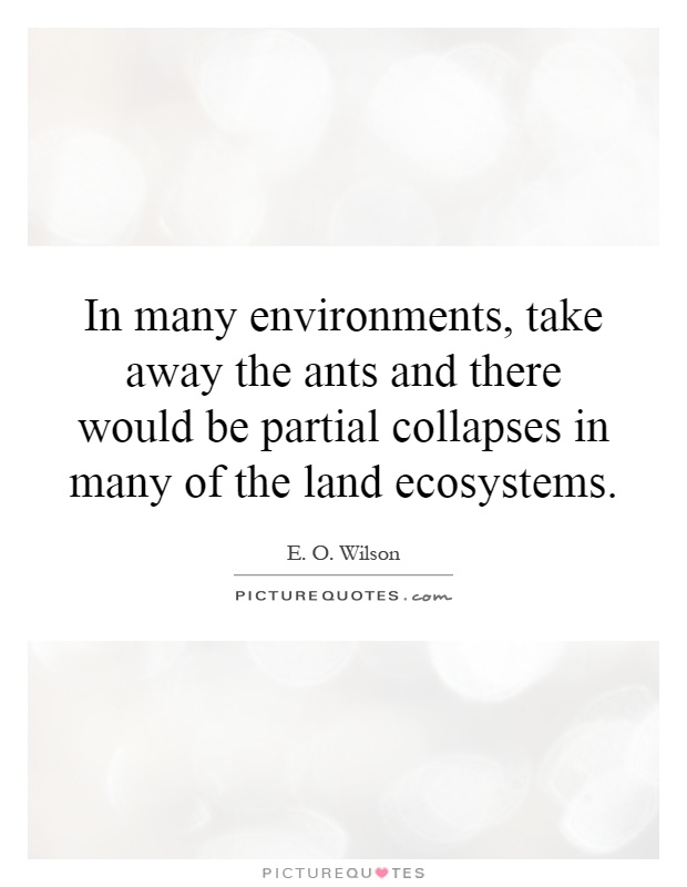 In many environments, take away the ants and there would be partial collapses in many of the land ecosystems Picture Quote #1